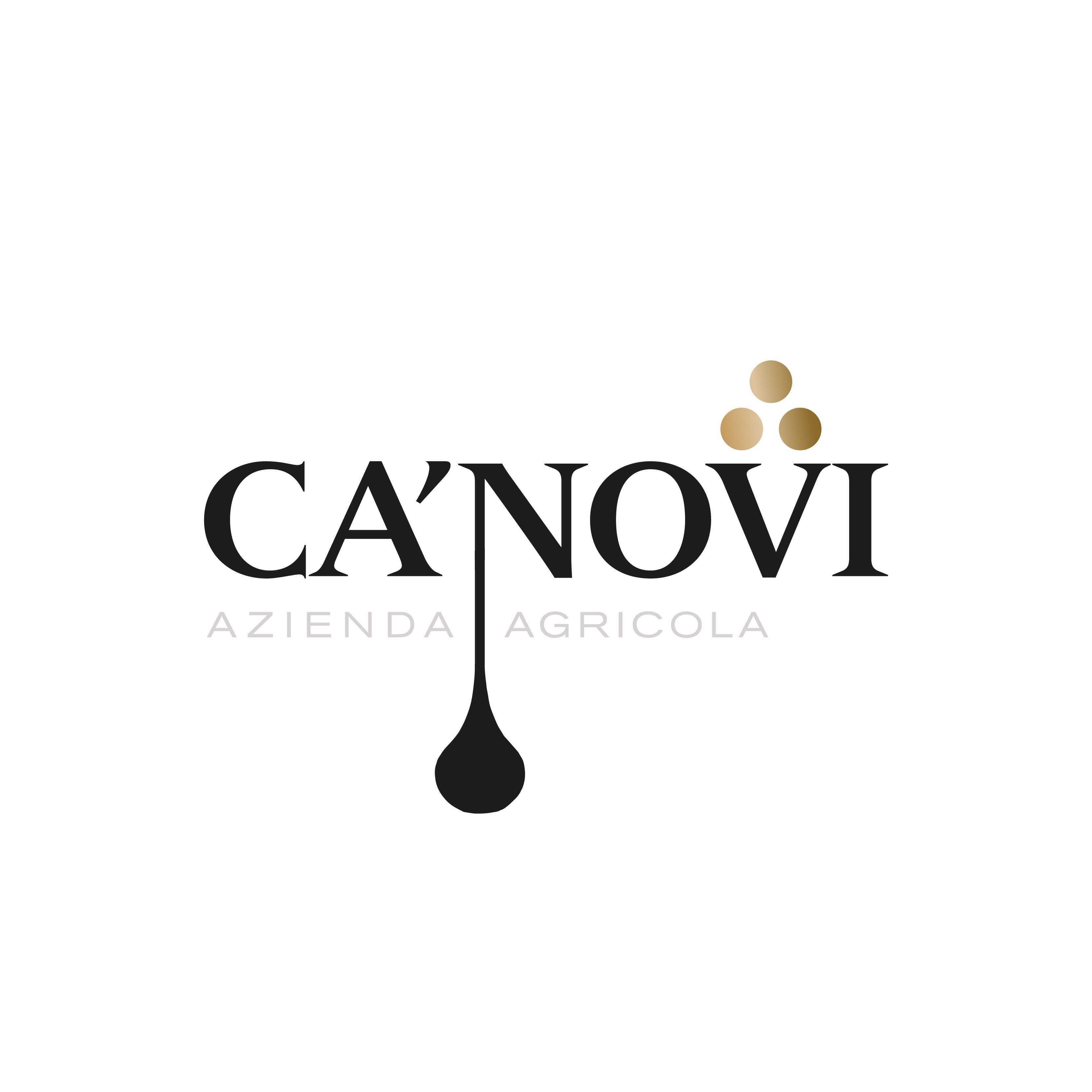 Logo Ca' Novi